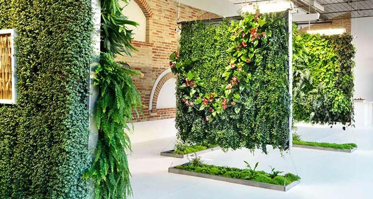 Giardini verticali come arredare casa con le piante simona rossetti - Giardino verticale in casa ...